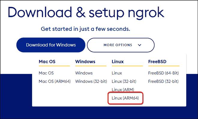 Copy The Ngrok Download Link For Linux Arm64