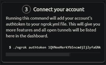 Get Authentication Token From Ngrok Website Dashboard